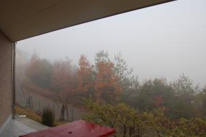 自邸(霧)